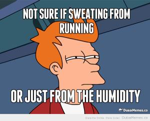 dubai-heat-meme